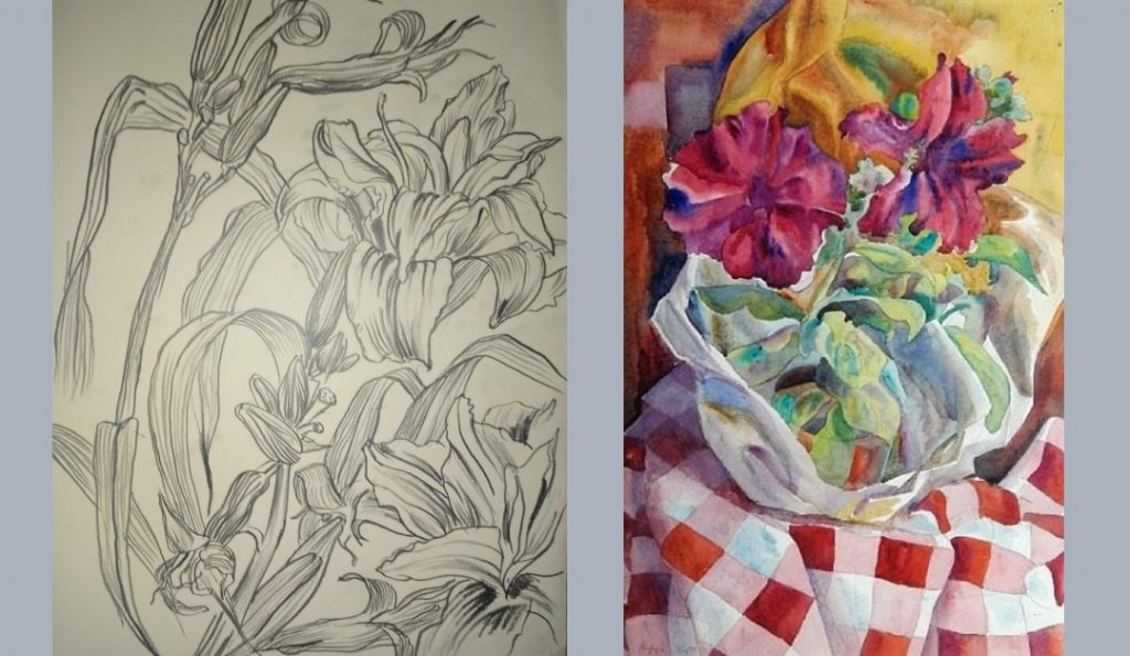 Pencil sketch of ornamental lilies and a watercolour of a purple flowering pot plant by Colin Moss